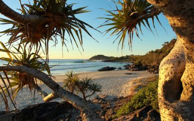 Spend Your Christmas on the Picturesque Tweed Coast